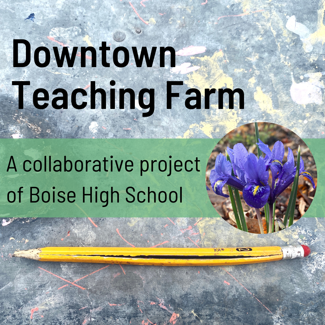 Downtown Teaching Farm: A collaborative Project of boise High School